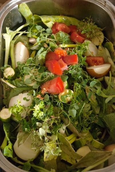 Zutaten für den Gemüsefond