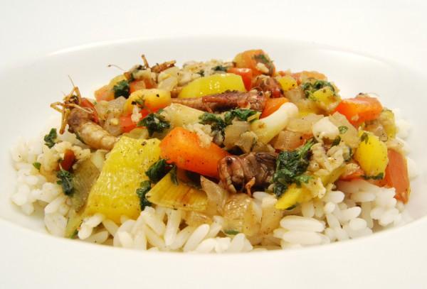 Heuschrecken mit Gemüse und Reis