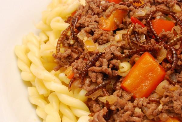 Leckeres Hackfleisch, Mehlwürmer und Paprika mit Sauce und Pasta