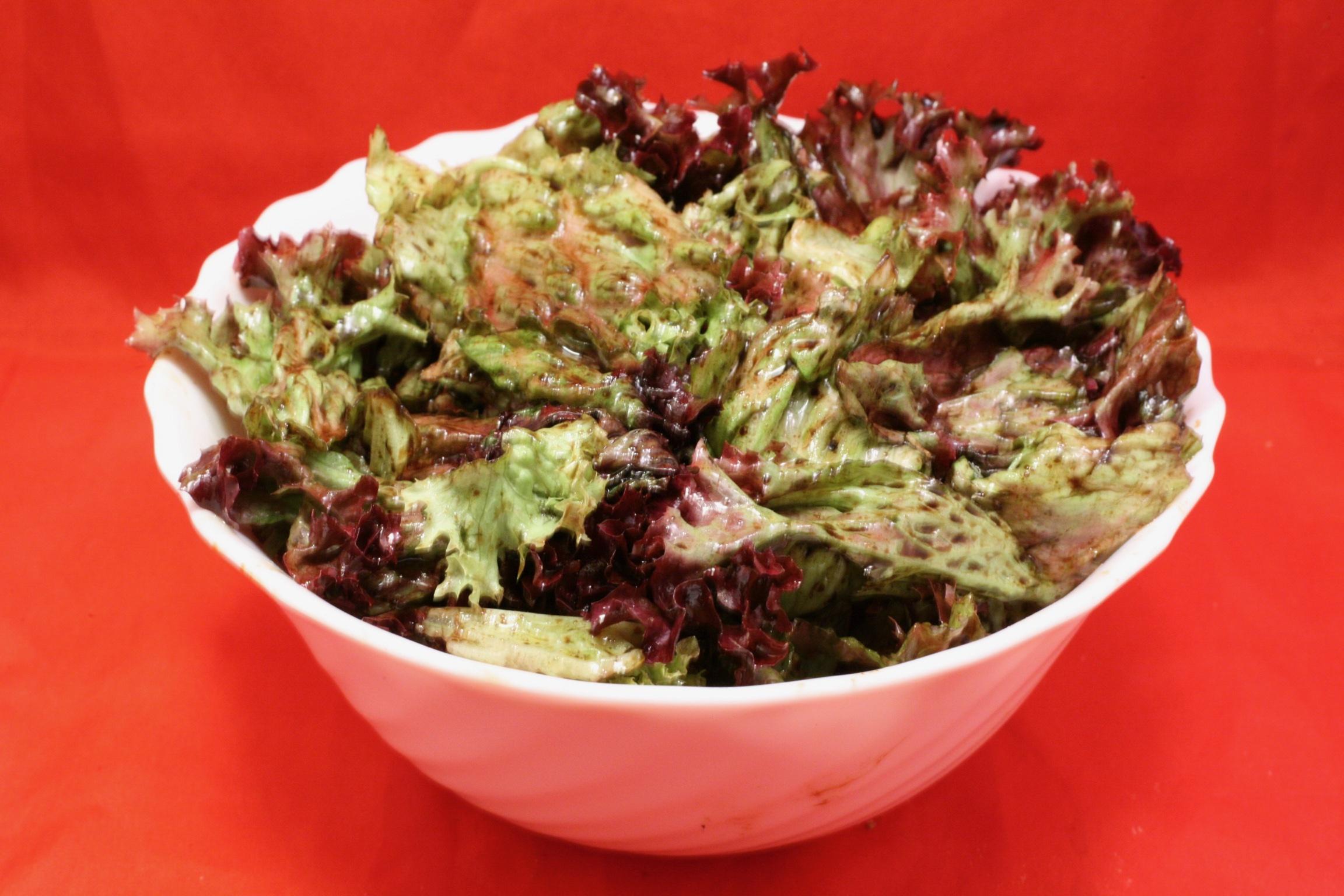 Lollo-rosso-Salat